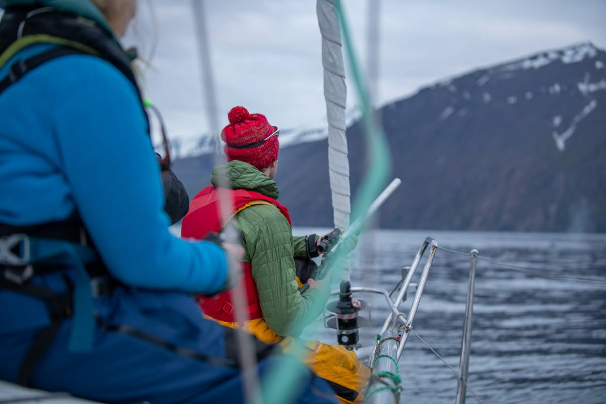 Approaching a humpback whale as we get ready to collect blubber samples. Photo by By Peter Svanberg